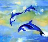 dolphins_700
